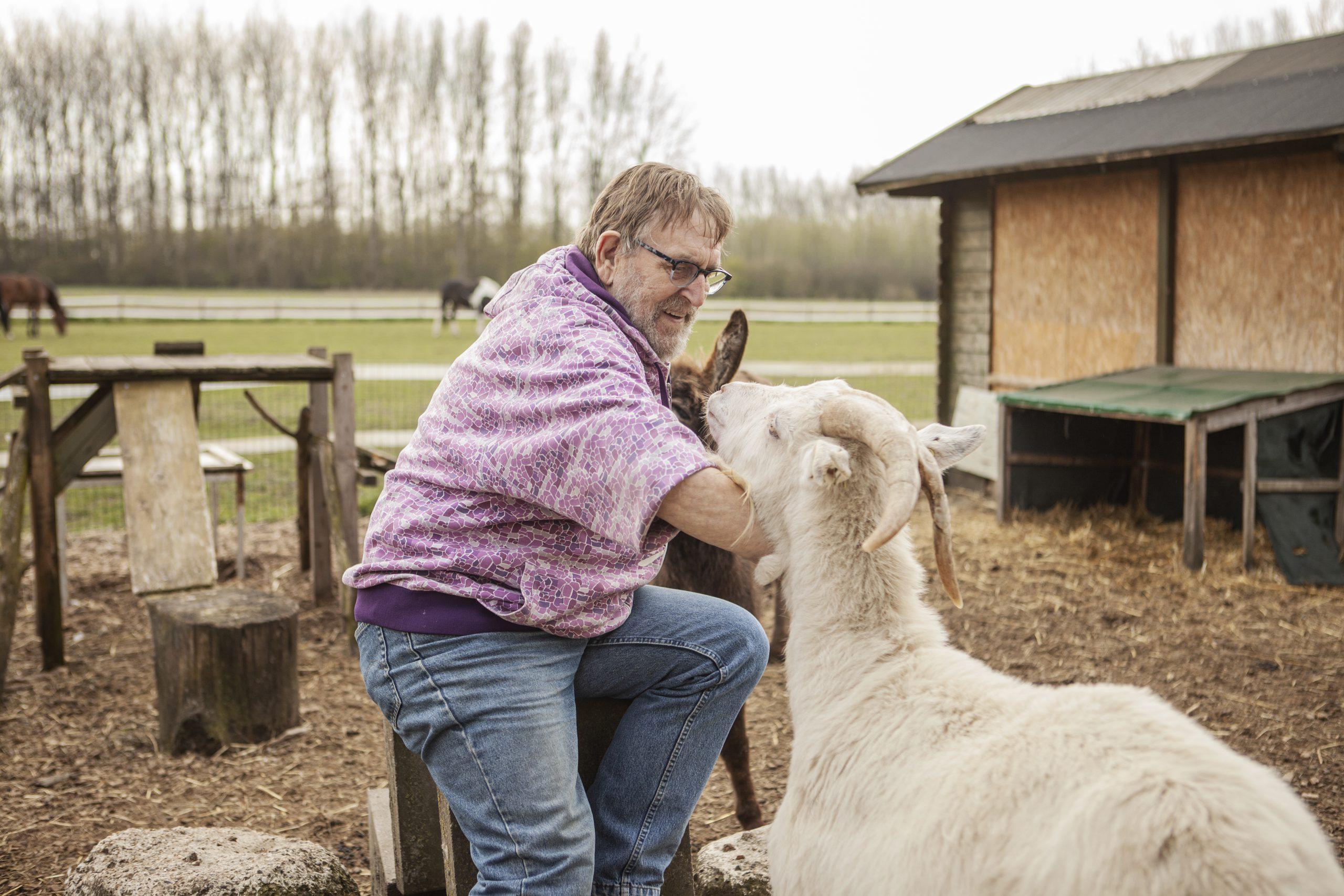 Dagbesteding-Geiten-Buiten-Duurzaam-Hof-Van-Axel-Contact-Zeeuws-Vlaanderen-Zeeland-Oudere-Volwassenen-Met-Zorgvraag-Dementie