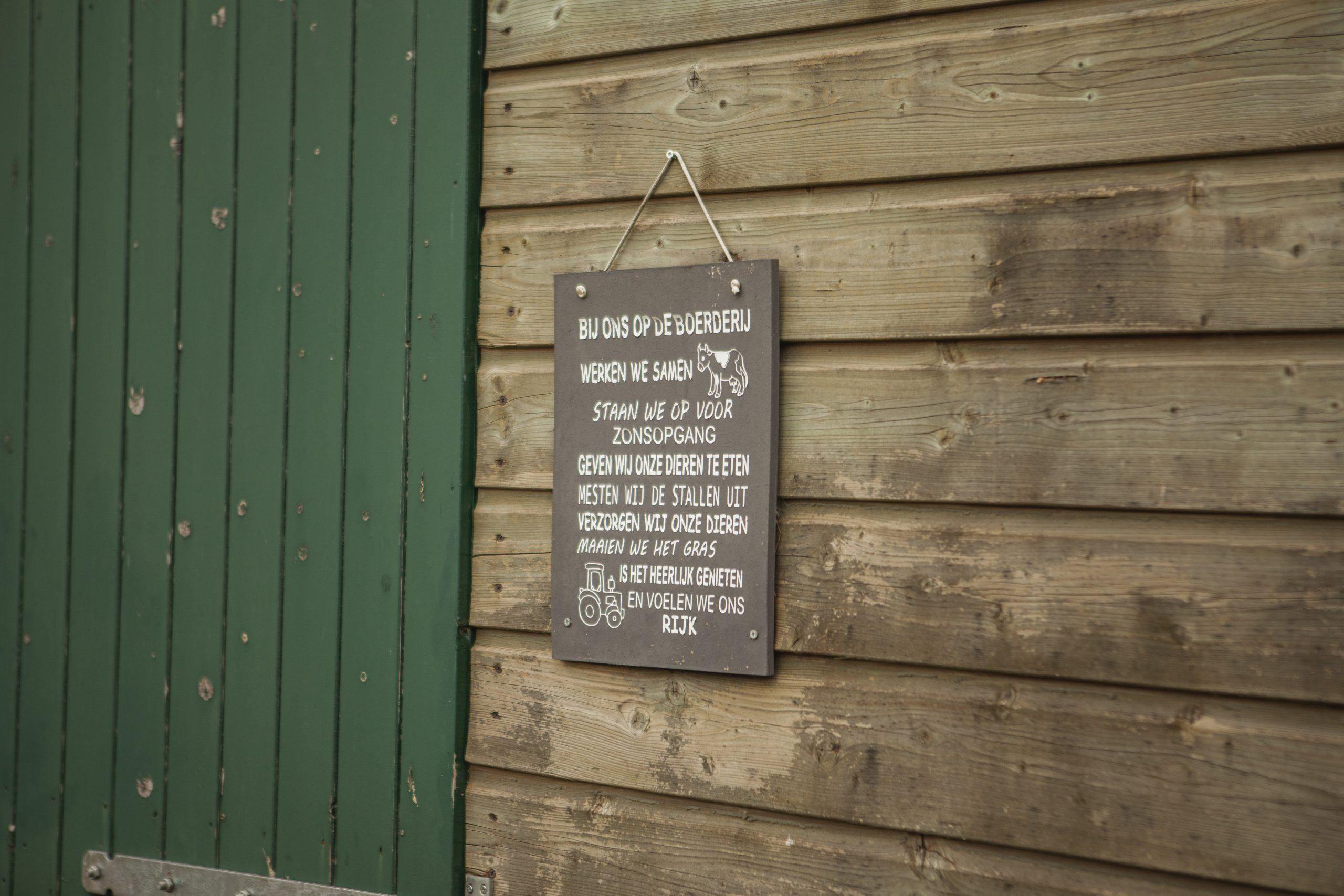 Boerderij-Zorgboerderij-camping-Hof-van-Axel-paarden